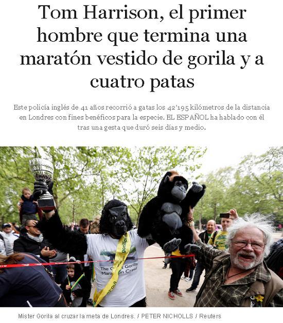 maraton gorila