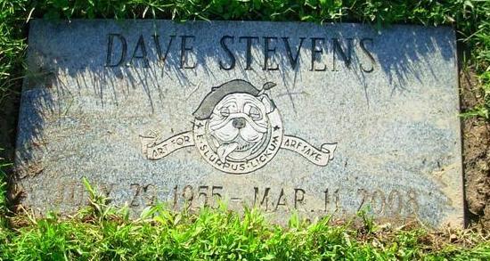 tumba stevens