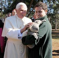 pope_koala.jpg