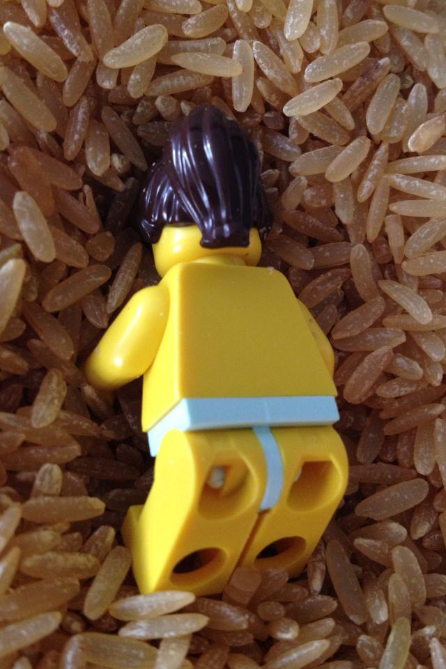 Survivor Caramoan LEGO Reward Challenge Requisite Brenda's ass shot